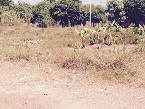 Bungalow Lot Taman Tasik Utama Ayer Keroh MITC Melaka For Sale
